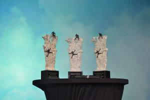 Awards voor de winnaars